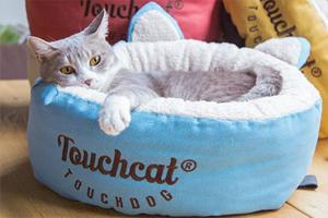 猫咪不肯睡猫窝怎么办